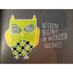 Wisdom begins in wonder.